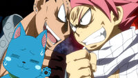 Gajeel and Natsu fighting about their cats