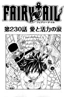 Cover 230