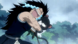 Gajeel and Panther Lily