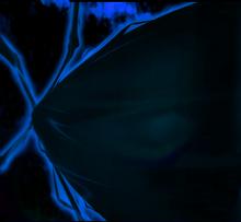 Shadow devil's rage (2)