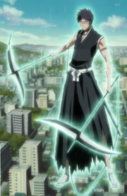 Hisagi Full Body
