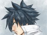Gray Fullbuster (Ash)