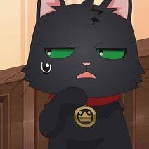 Lucif the Cat profile