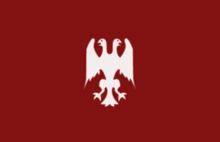 Rebel's Flag