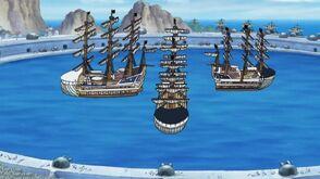 Lysiloma Fleet