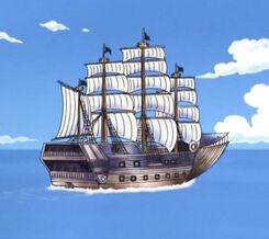 Lysiloma Navy