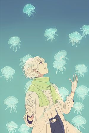 Jellyfish Magic