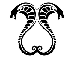 Snake-tattoo-very-special-animal-styles-that-represents-106187
