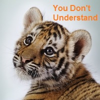 File:You Don't Understand.jpg
