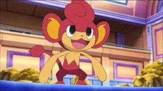 Tus personajes favoritos de pokemon