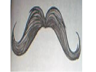 File:Fake Mustache.png