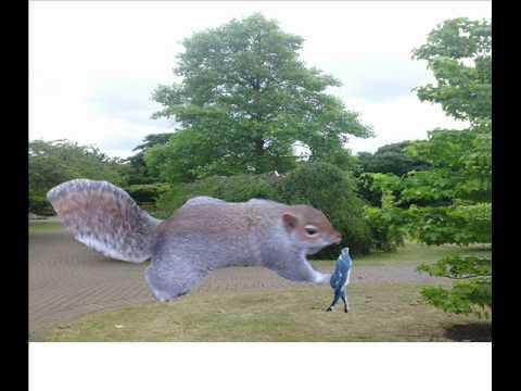 File:Squir.jpg