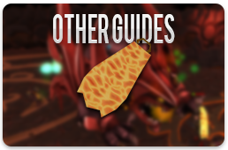 Other guides