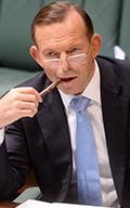 Abbott Chair