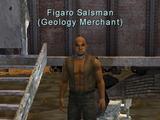 Geology: Figaro Salsman