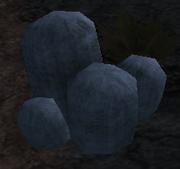 Woolly cactus
