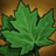 Nature icon263