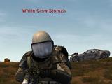 Enemy: White Crow Storozh
