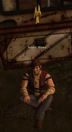 Adam weed