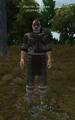 Warrior Skinned