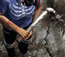 Plumber Pipe