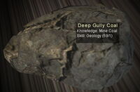 Deep Gully Coal