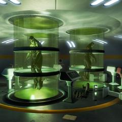 FEV Lab