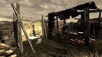 Neil's shack