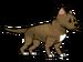 FoS Pit Bull Terrier