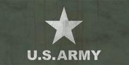 FO76 Army Flag 3