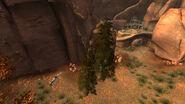 Burial mounds hollow log