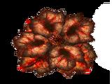 Кроволист
