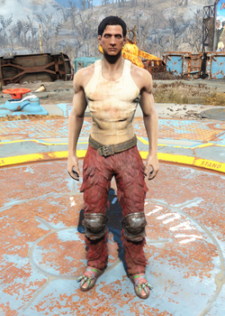 Fo4 Furry Pants and T-Shirt