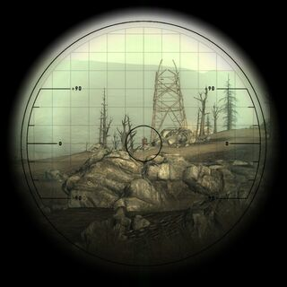 The scope view and the required aim compensation for a head shot