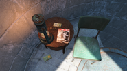 FO4 Live & Love in Bunker Hill