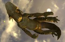 Swimminggecko7