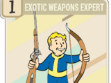 Exotic Weapons Expert