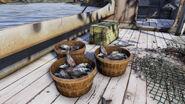 FO76 buckets of fish (Ohio River)