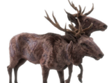Radstag (Fallout 76)