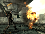 Шиш-кебаб (Fallout 3)