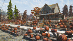 Fo76 Pumpkin house