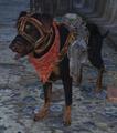 Kyle dog.png