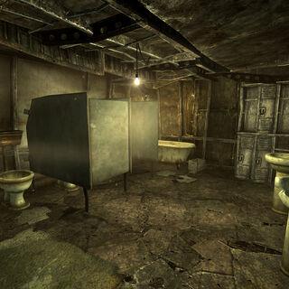 Інтер'єр жіночого туалету