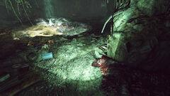 Fo76 Wendigo cave (Morris's end)