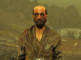 Ward (Fallout 4)