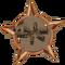 Badge-2654-0
