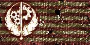 FO3BoSflag