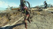 FO4 Pack Tormentor