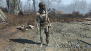FO4 Synth Stormer