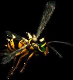 FOT wasp